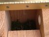 chickadeehouse2
