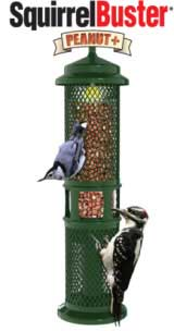 brome peanut plus feeder
