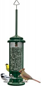 brome birdcare squirrel buster legacy