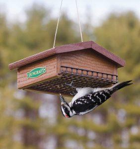 duncraft eco strong suet feeder