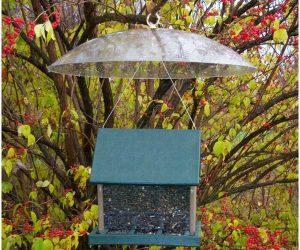 songbird essentials baffle